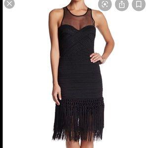 Parker dress NWT